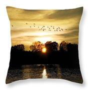 Dream Of A Sunset Throw Pillow