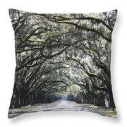 Dream World Throw Pillow by Carol Groenen
