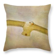 Dream World Seagull Throw Pillow