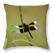 Dreaming Dragonfly Throw Pillow