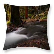 Dreaming Forest Throw Pillow