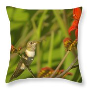 Dreaming In The Nectar Throw Pillow