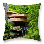 Dreaming Of Fallingwater 4 Throw Pillow