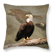 Dreaming Of Freedom Throw Pillow