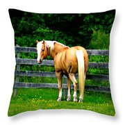 Dreaming Of Gold Throw Pillow
