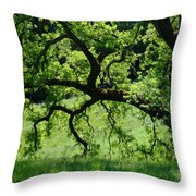 Dreaming Under The Old Oak Throw Pillow