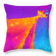 Dreams I'll Never See Throw Pillow