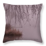 Dreams Of The Heart Throw Pillow