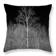 Dreamscape Throw Pillow by Luke Moore