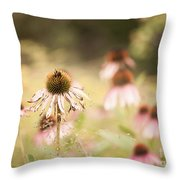 Dreamy Coneflowers Throw Pillow