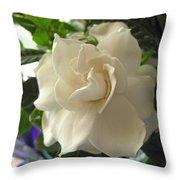 Dreamy Creamy Gardenia Throw Pillow