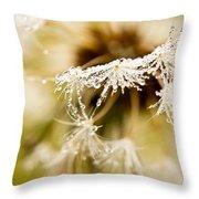 Dreamy Dandelion Throw Pillow