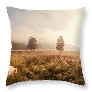 Dreamy Fields. The Trossachs. Scotland Throw Pillow