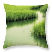 Dreamy Marshland Throw Pillow
