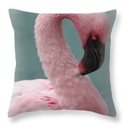 Dreamy Pink Flamingo Throw Pillow