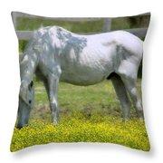 Dreamy Pony Throw Pillow