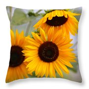 Dreamy Sunflower Day Throw Pillow