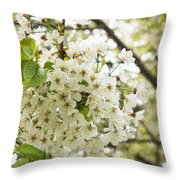Dreamy White Cherry Blossoms - Impressions Of Spring Throw Pillow