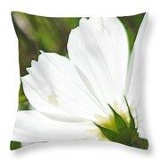 Dreamy White Cosmos Throw Pillow