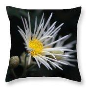 Dreamy White Throw Pillow