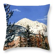 Dressed For Winter Throw Pillow