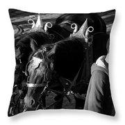 Dressed Horses Throw Pillow