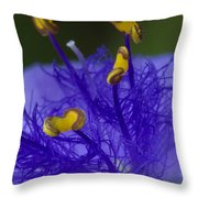 Dressed In Blue Jackets #2 Throw Pillow