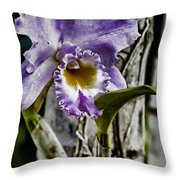 Dressed In Purple Throw Pillow