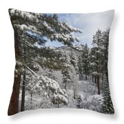 Distant Peak Throw Pillow