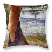 Dressed-up With Nowhere To Go Throw Pillow