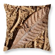 Dried Leaf Throw Pillow