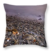 Dried Leaves Of The Sea Throw Pillow