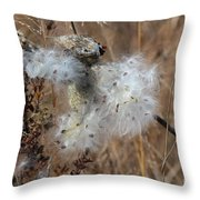 Dried Milk Weed  Throw Pillow