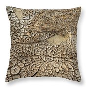 Dried Mud Pan It Time Of Drought Throw Pillow