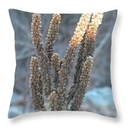 Dried Plant Throw Pillow
