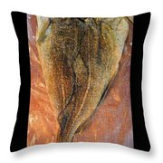 Dried Salted Codfish Back Throw Pillow