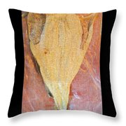 Dried Salted Codfish Front Throw Pillow