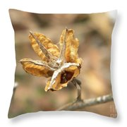 Dried Seed Throw Pillow