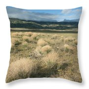 Dried Shrubs In Late Winter Carrizo Throw Pillow
