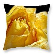 Dried Yellow Rose II Throw Pillow