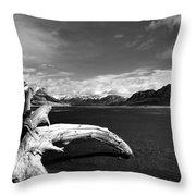 Drift For A While  Throw Pillow