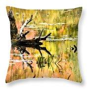 Drift Wood Reflections Throw Pillow