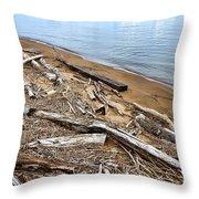 Drifted Woods Throw Pillow
