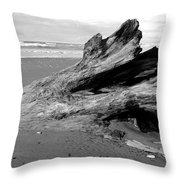 Drifter I Throw Pillow