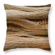 Driftwood 1 Throw Pillow by Adam Romanowicz
