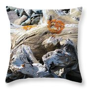 Driftwood Abstract Throw Pillow