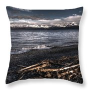 Driftwood At Land's End Throw Pillow