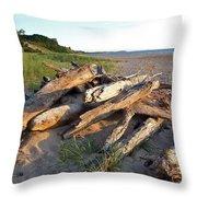 Driftwood At Sunset Throw Pillow
