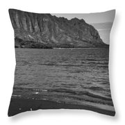 Driftwood-black And White Throw Pillow