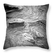 Driftwood Butte Bw 1 Throw Pillow